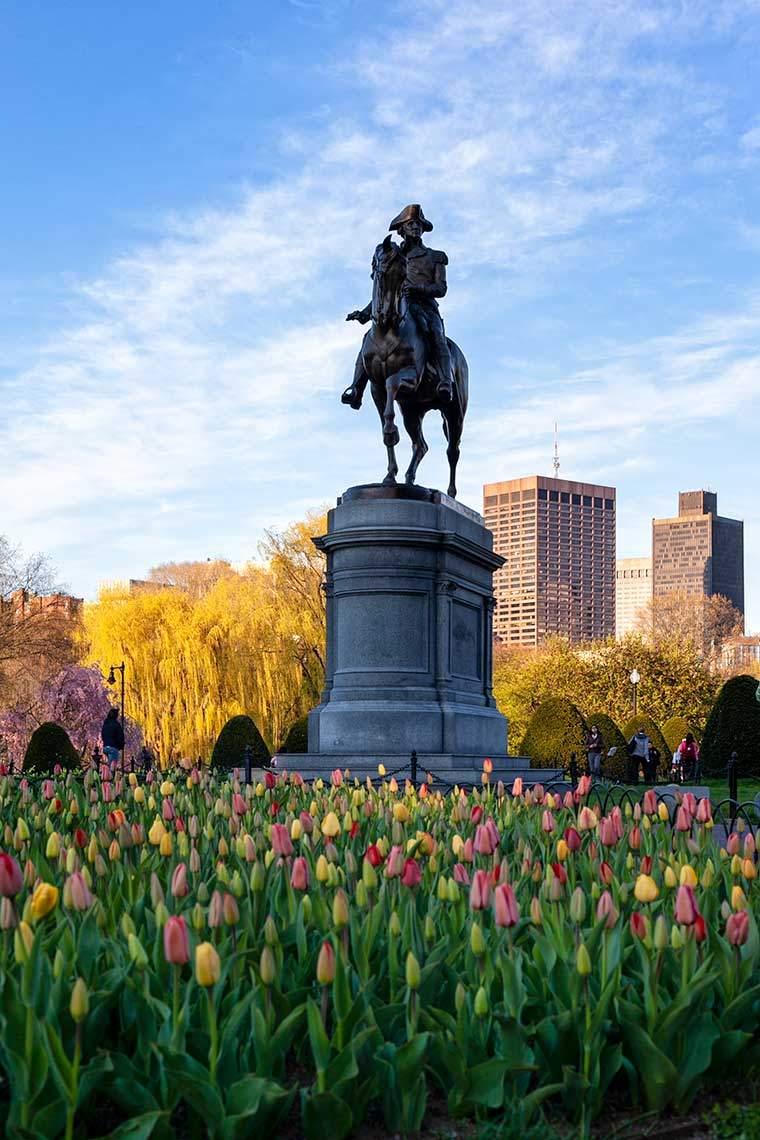 Iconic George Washington Statue with tulips in the foreground